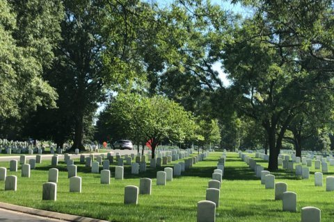 Hundreds volunteer for landscaping day of service at Arlington National Cemetery