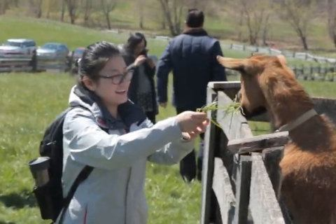 From beer to beets, almost 20 Montgomery County farms open to visitors this weekend