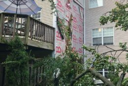 A tree fell on a townhouse in Olney, Maryland, on Tuesday, July 2, 2019. (Courtesy Montgomery County Fire and Rescue)