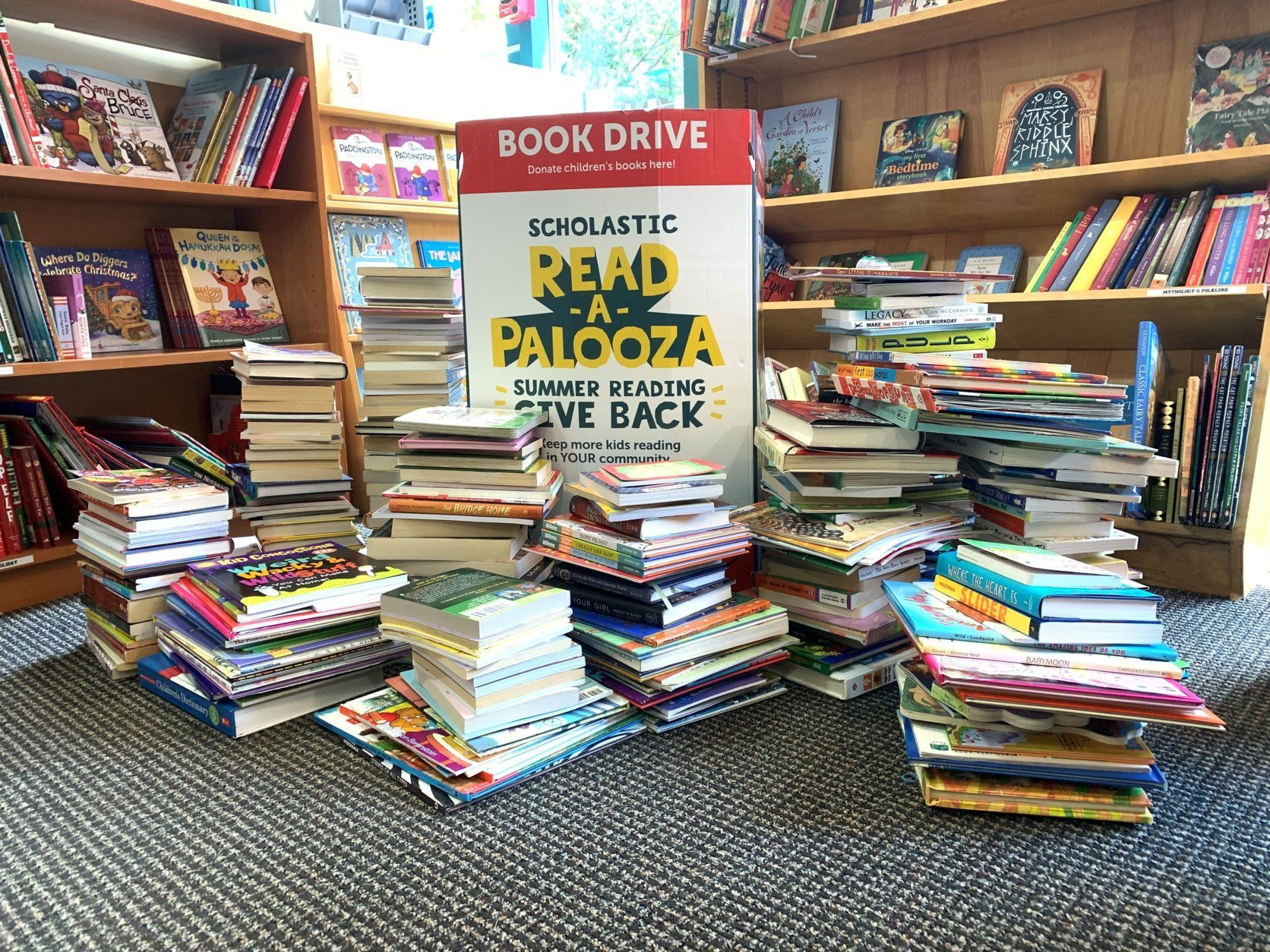 <p>Pictured are the book donations.</p>