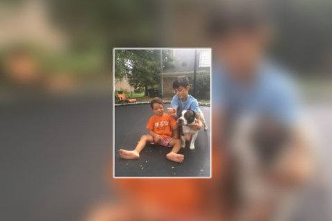 Missing for 3 months, emotional support dog reunited with 4-year-old Maryland boy