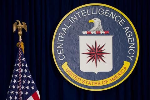 Woman pleads guilty in CIA trespass seeking 'Agent Penis'