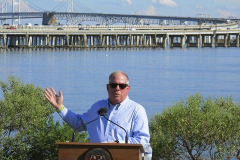 Queen Anne's business leaders, enviros unite to oppose 3rd Bay span