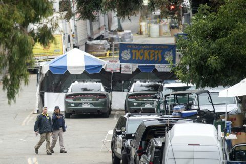 Suicide, not police, killed California festival gunman