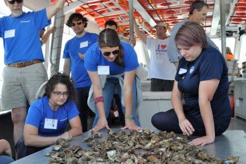 Northrop Grumman dives into Chesapeake Bay oyster reef monitoring