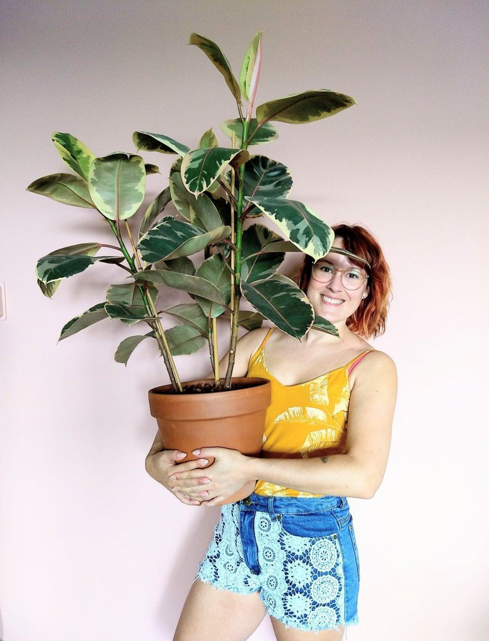This undated photo shows Karin Scholte holding a Ficus elastica plant in the Netherlands. Scholte's Instagram feed is devoted to houseplants. (Patricia Scholte/Karin Scholte via AP)