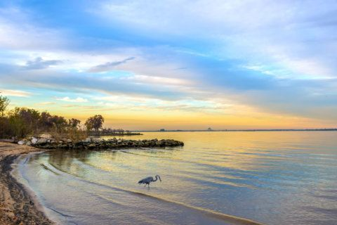 Bolstering the Bay: Va., Md. release another phase of plans to protect the Chesapeake Bay