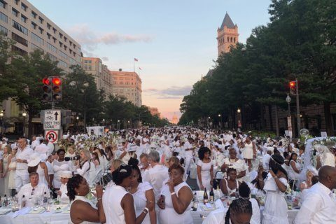 DC's 2019 Diner en Blanc '100% better than last year'