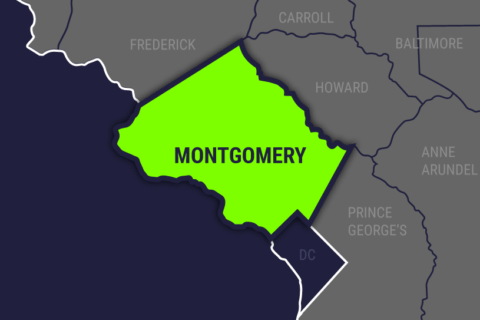 Driver dead in Montgomery Co. after pickup crashes into trees