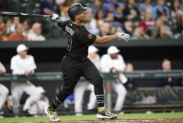 Baltimore Orioles' Pedro Severino follows though on a grand slam against the Tampa Bay Rays during the third inning of a baseball game Saturday, Aug. 24, 2019, in Baltimore. (AP Photo/Gail Burton)