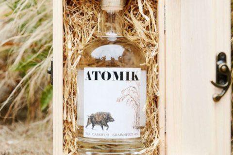 Scientists make radioactivity-free vodka from Chernobyl