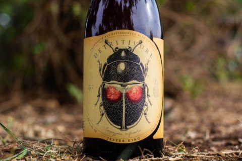 Beer of the Week: Jester King Detritivore Farmhouse Ale