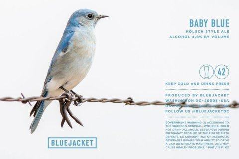 Beer of the Week: Bluejacket Baby Blue Kölsch