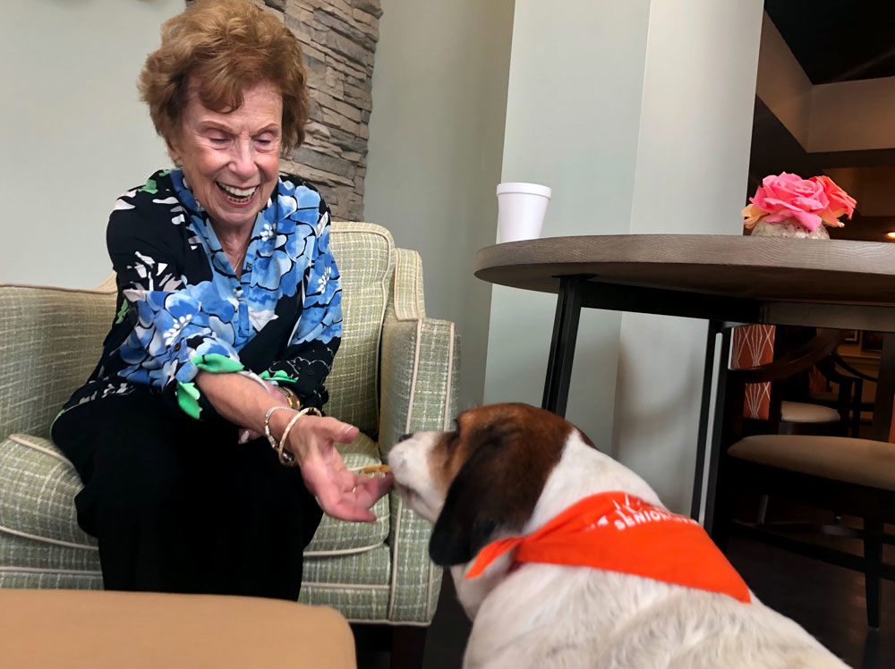 <p>Beth Mauser, a resident at Sunrise, is one of Journey&#8217;s newest family members. She got her first dog at 78 years old and, at 80, she was thrilled to learn Journey would be sticking around.</p> <p>&#8220;Journey is just perfect. Every senior group should adopt a dog,&#8221; Mauser said.</p>