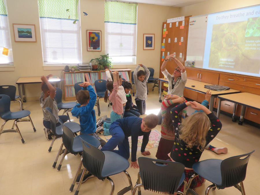 Second graders at D.C.'s Maret School get a lesson in the life cycle of the mussel