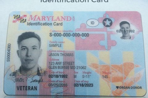 8,000 Maryland drivers could lose licenses during next traffic stop
