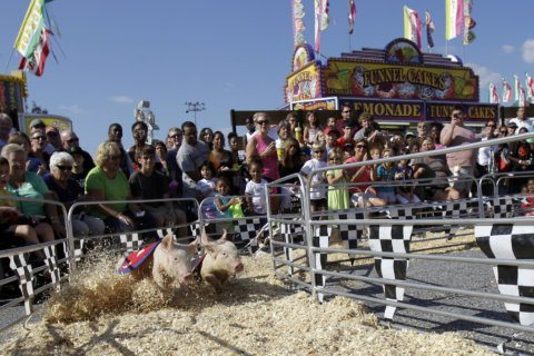 How Maryland State Fairgoers found $271,000