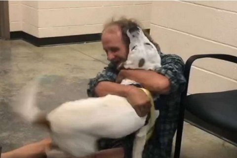Homeless man reunites with dog in heartwarming video