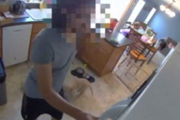 Dog walker caught on cam raiding family's fridge