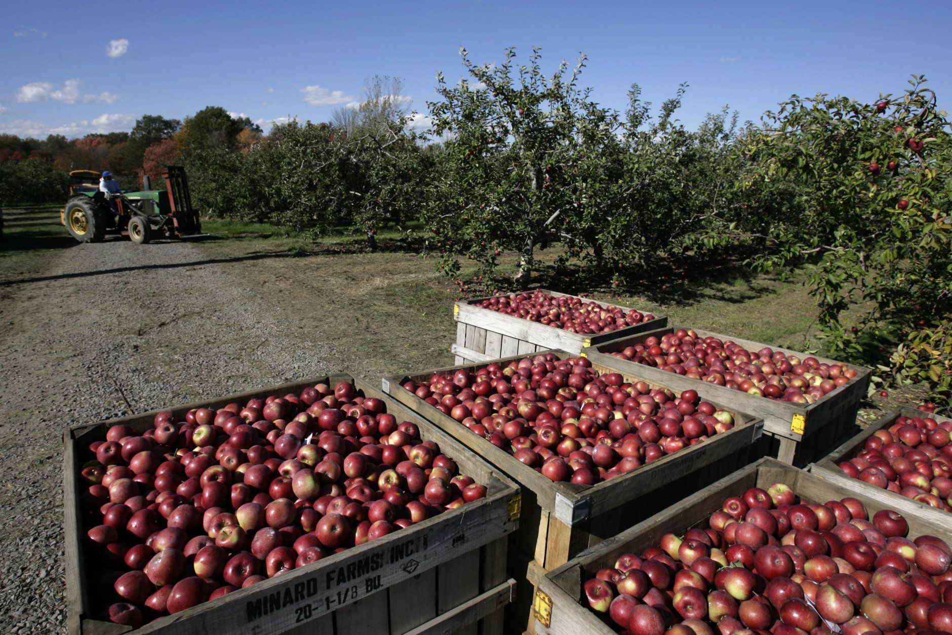 """<p><a href=""""http://www.catoctinmountainorchard.com/""""><b>Catoctin Mountain Orchard</b></a><br /> <em><span style=""""font-weight: 400;"""">15036 N Franklinville Rd., Thurmont, Maryland</span></em></p> <p>Pick your own apples, cut your own flowers and pick out your own homemade pies and preserves at Catoctin Mountain Orchard, just north of Frederick, Maryland.</p>"""