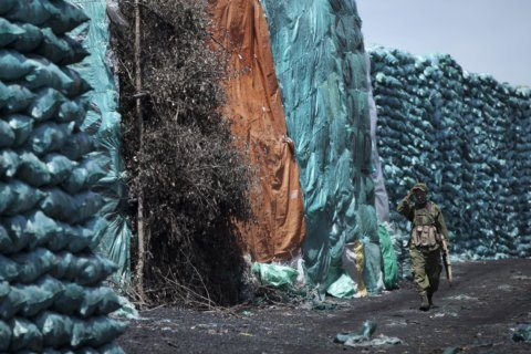 Africa's charcoal trade is decimating fragile forest cover