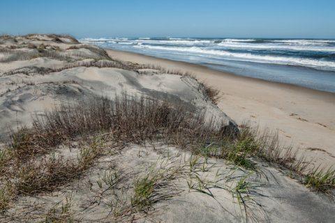Fairfax County man dies in ocean at Cape Hatteras National Seashore