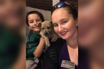 Florida family mourns the loss of hero pit bull, who died protecting their children from a venomous snake