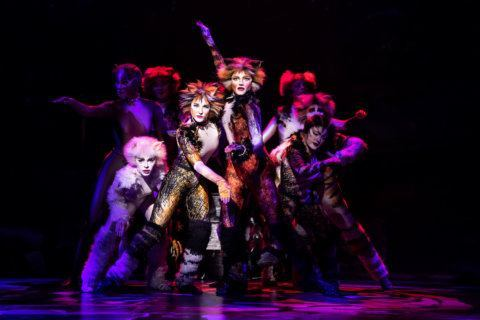 Q&A: Grizabella makes 'Memories' in 'Cats' tour at Kennedy Center