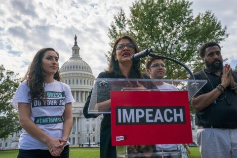 Michigan Rep. Tlaib's campaign pushing impeachment T-shirts