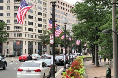 Ahead of statehood hearing, DC displays US flags with 51 stars
