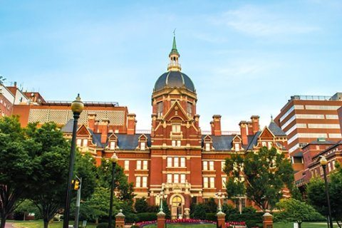 Johns Hopkins University announces new center for psychedelic research