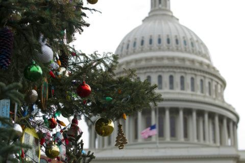 Ban may stop cutting of Capitol Christmas tree in New Mexico