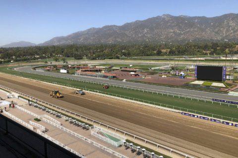 Horse racing's tragic, wild ride culminates at Breeders' Cup