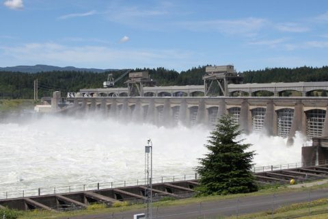 Pacific Northwest tribes: Remove Columbia River dams