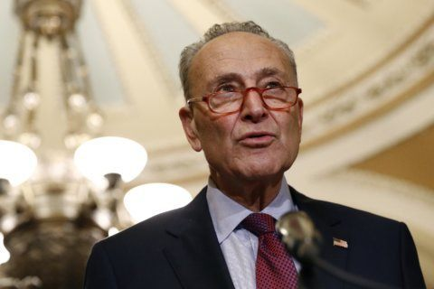 Schumer proposes $462 billion car swap – gas for electric