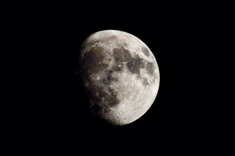 Join the world in celebrating the moon Saturday night