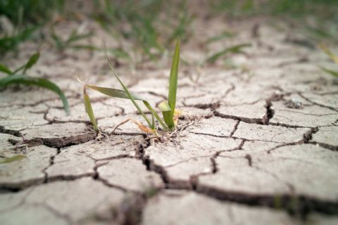 Northam places Virginia under drought watch amid abnormally dry weather