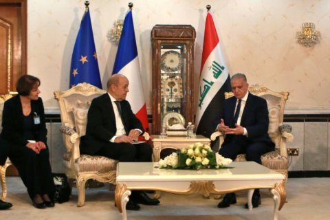 FM: Iraq will only repatriate IS fighters who are Iraqis