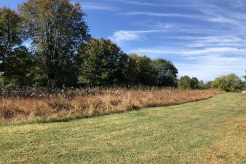 Low score wins: Va. golf courses honored for reduced water, energy use