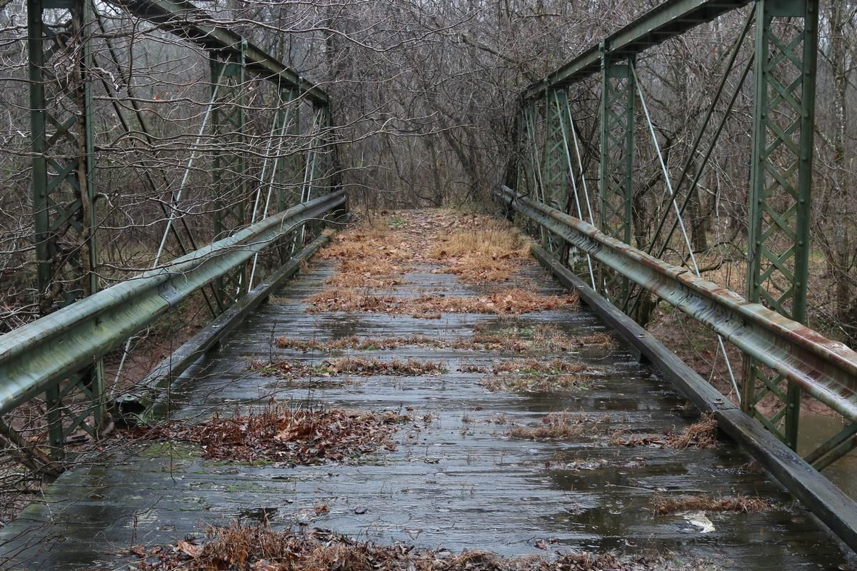<p>The curved approaches of Fleetwood Drive on either side of the run are now buried in sediment and brush. Grass tussocks rise from the wooden bridge deck and vines crawl up its iron railings after years of abandonment.</p> <p>Aging yet still standing, the bridges over Paint Branch and Cedar Run stand as monuments to generations of skilled laborers and engineers. The retired roads that lead up to their abutments are important reminders of how we got to where we are today — on the roads of decades past.</p>