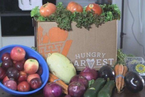 Would you eat 'ugly produce'? See fruit and veggies being sent by delivery services