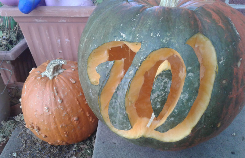 pumpkin curved with Nationals W