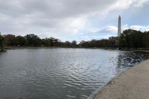 High-tech cleanup underway on the National Mall
