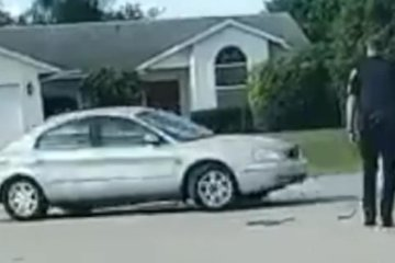 WATCH: Dog gets stuck in spinning car in cul-de-sac