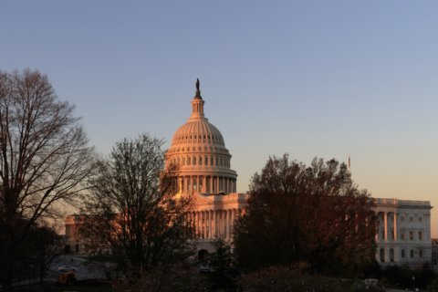 AP-NORC/USAFacts Poll: Facts missing from American democracy