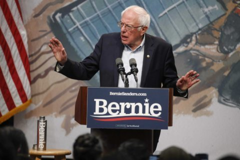 Sanders campaign replaces South Carolina state director