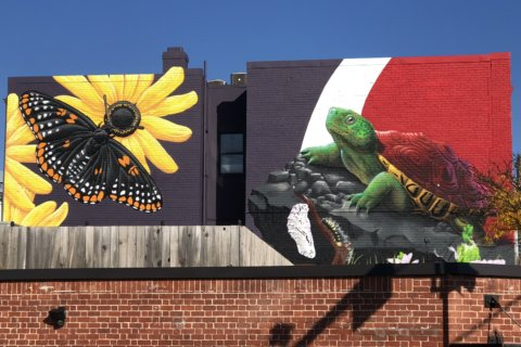 New College Park mural celebrates Maryland conservation efforts