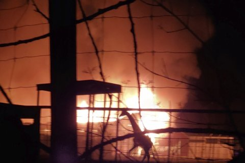Cause of fire that killed animals at wildlife park unknown