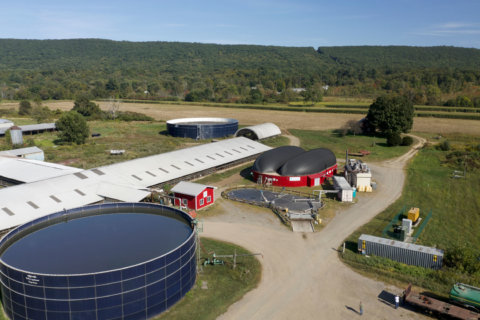 Dominion will turn cow waste into renewable energy