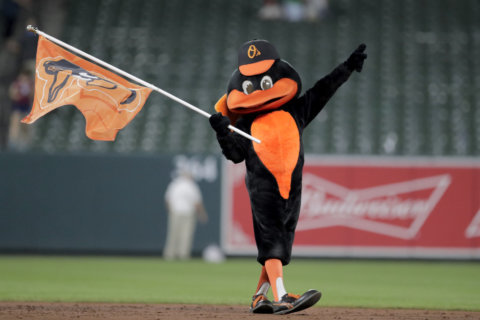 The Oriole Bird to join the Mascot Hall of Fame